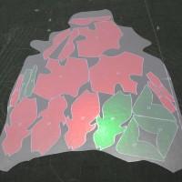 Projekcja elementów na skórze obuwniczej MiriSys POLSKA
